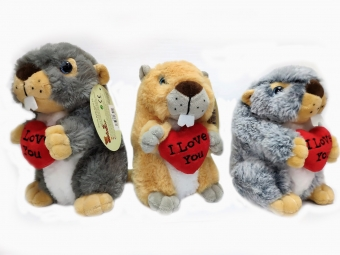 Beaver T1 18cm with heart